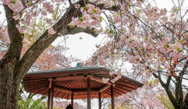 kota tujuan wisata musim dingin di Jepang tts